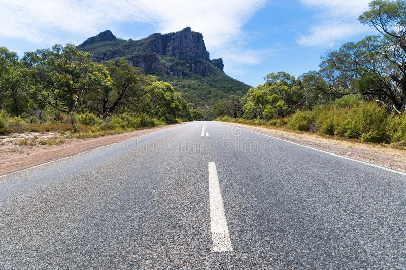 Road leading to the Grampians mountains, Victoria, Australia. Road leading to the Grampians mountains lined by trees, Victoria, Australia royalty free stock photography