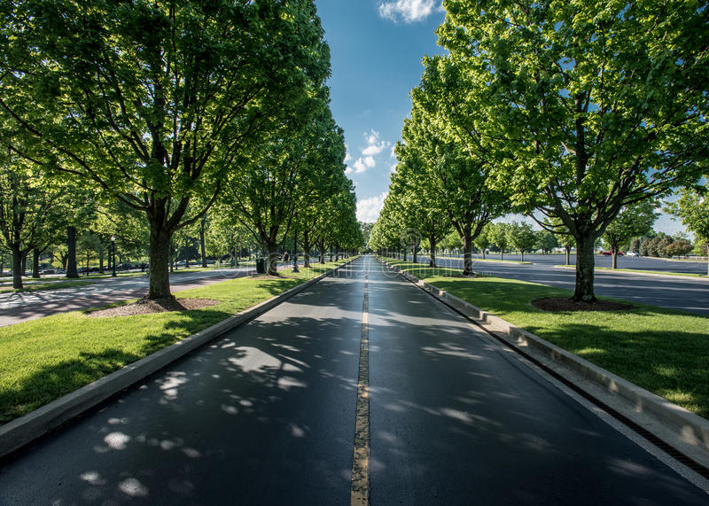The Road Leaving Keeneland. In summer royalty free stock photo