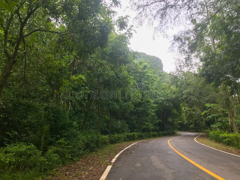 Road and mountain at Phatthalung, Thailand. Local road and mountain at Phatthalung, Thailand royalty free stock images
