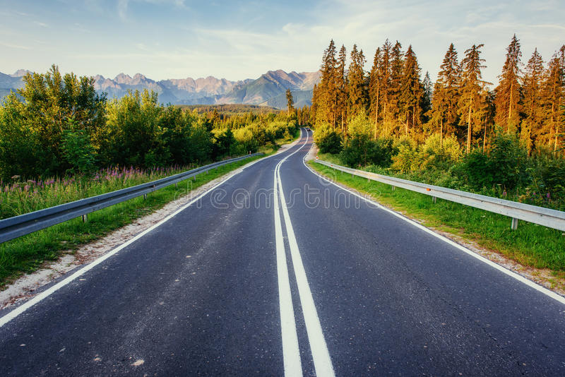 Road in mountains. Good lighting tree with sunlight in summer day. Carpathian, Ukraine, Europe royalty free stock photo