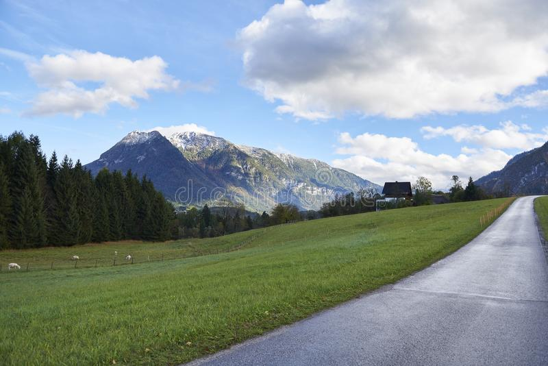 Road and mountains on a sunny day. Landscape with a green field and Austrian Alps. Austria, Gschwandt stock photos