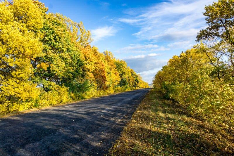 Road, Nature, Yellow, Sky stock image