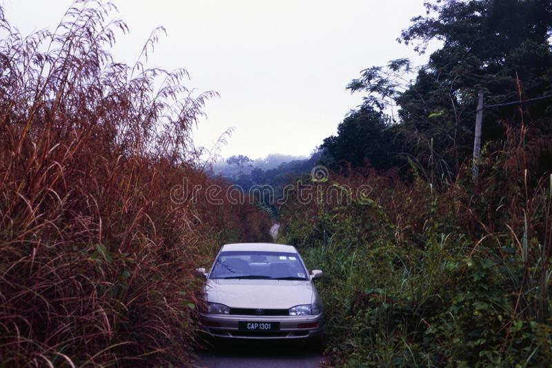 The road in the North of Malaysia between Taman Negara and George Town royalty free stock image