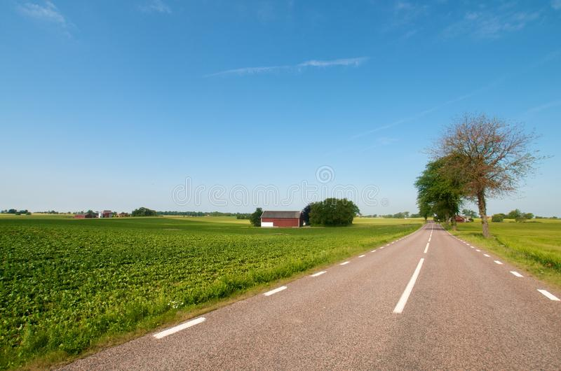 Road in open landscape royalty free stock photography