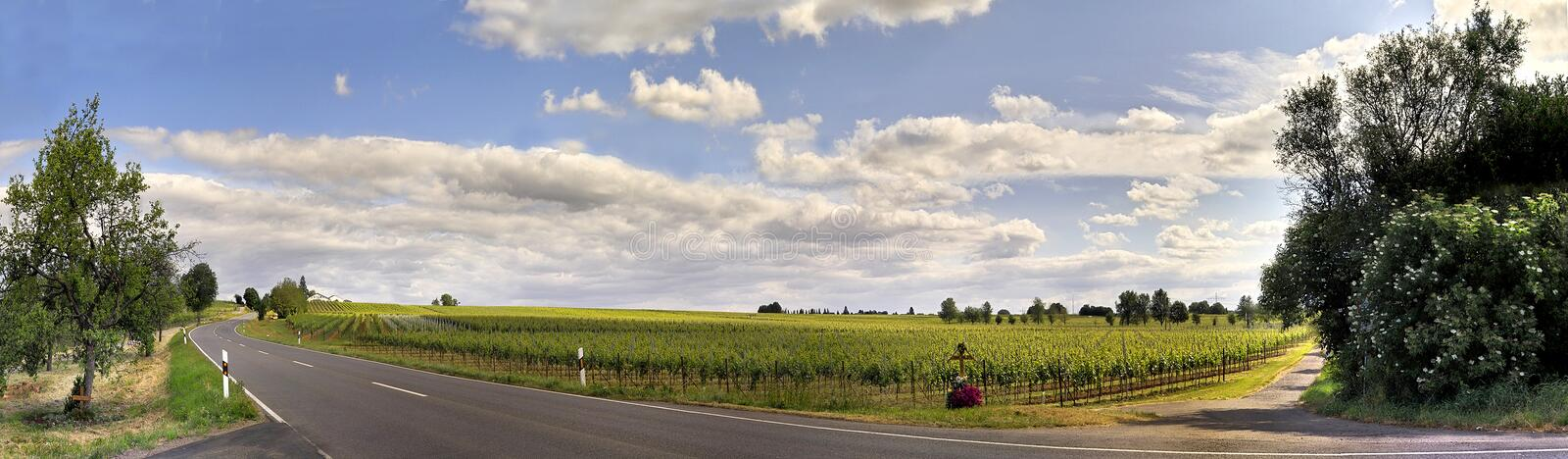 Download Road pano stock photo. Image of picturesque, peaceful, quiet - 200784