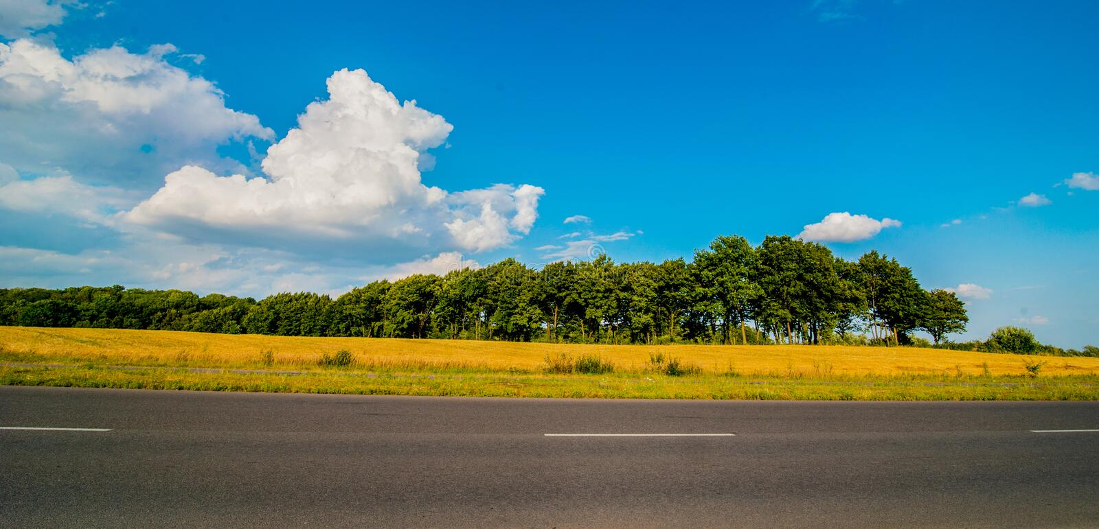 Road panorama on summer day with field and trees. Without transport stock photography