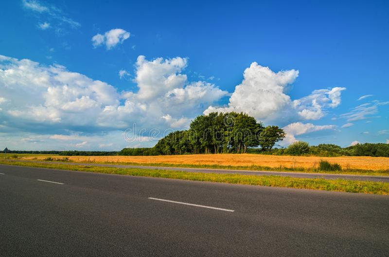 Road panorama on summer time with clouds. Road panorama on summer day with field and trees royalty free stock photography