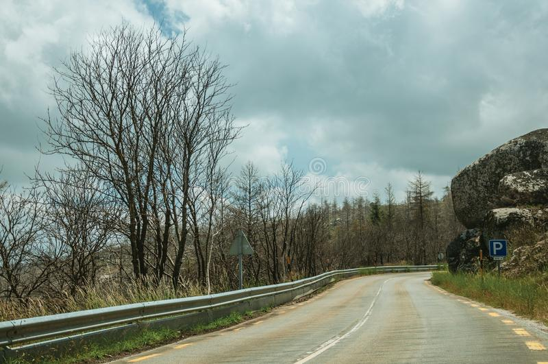 Road passing through burnt forest on rocky landscape stock photos