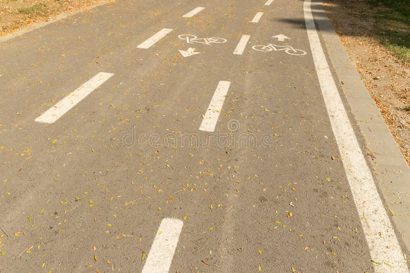 Road for pedestrians and bicycles, bike lane in the park, signposted royalty free stock image