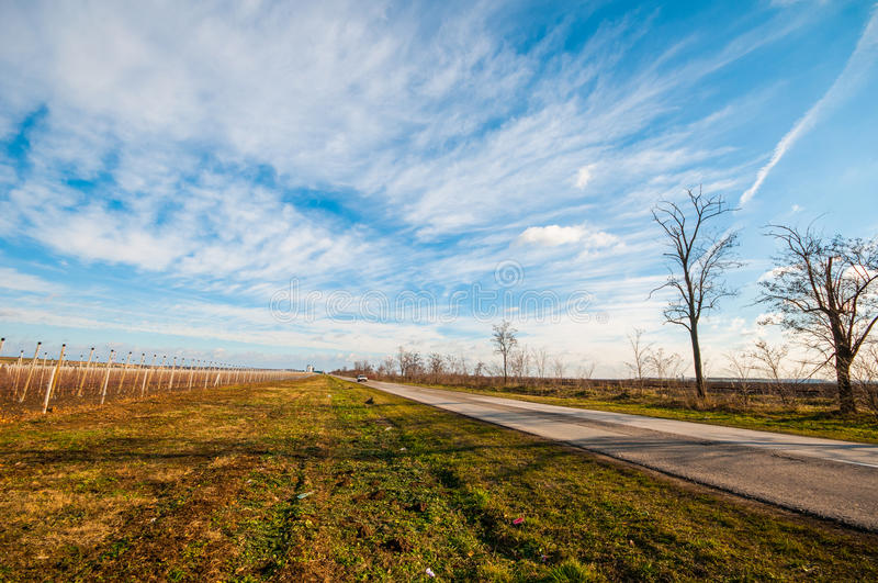 Road in the plain stock photography