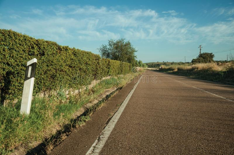 Road with reflective warning pole next to shrubs. Countryside road with reflective warning pole and grassy ditch next to shrubs on sunset near Elvas. A gracious stock photography