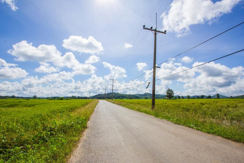 Road through rice fields in Thailand royalty free stock photo