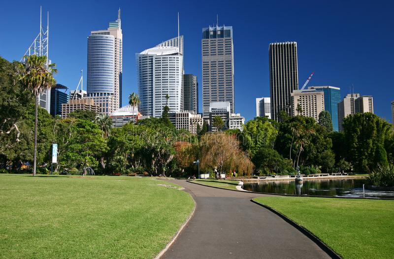 Road in Royal Botanic Garden leading to city downtown with iconic modern skyscrapers, and trees in Sydney. Urban park with pathway, grass, vegetation and iconic stock photos