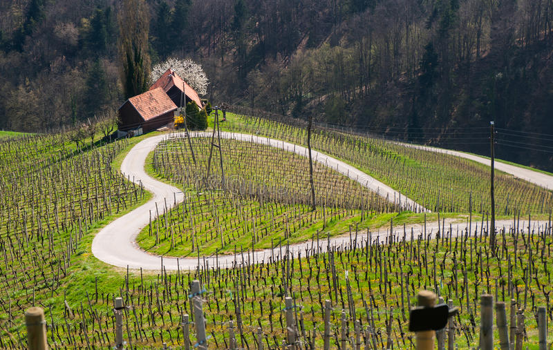 Road in a shape of a heart, Maribor. Road in a shape of a heart near Maribor, Slovenia stock image
