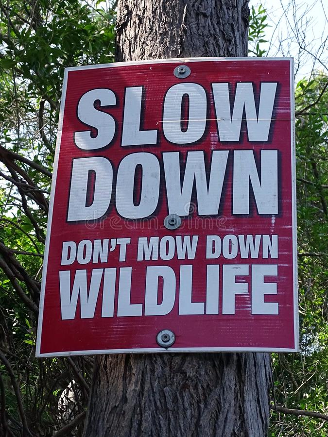 A road sign bolted to a tree requiring people to slow down and don`t mow down wildlife royalty free stock photos
