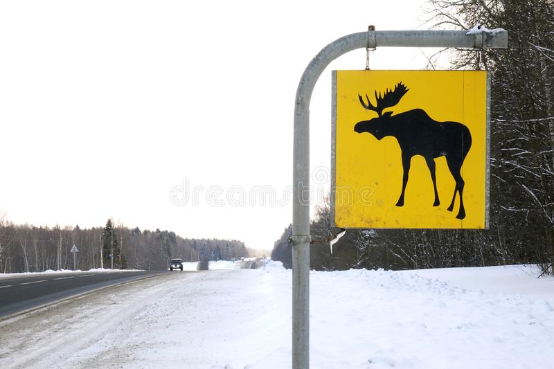 Road sign. Moose are wild animals. stock photo