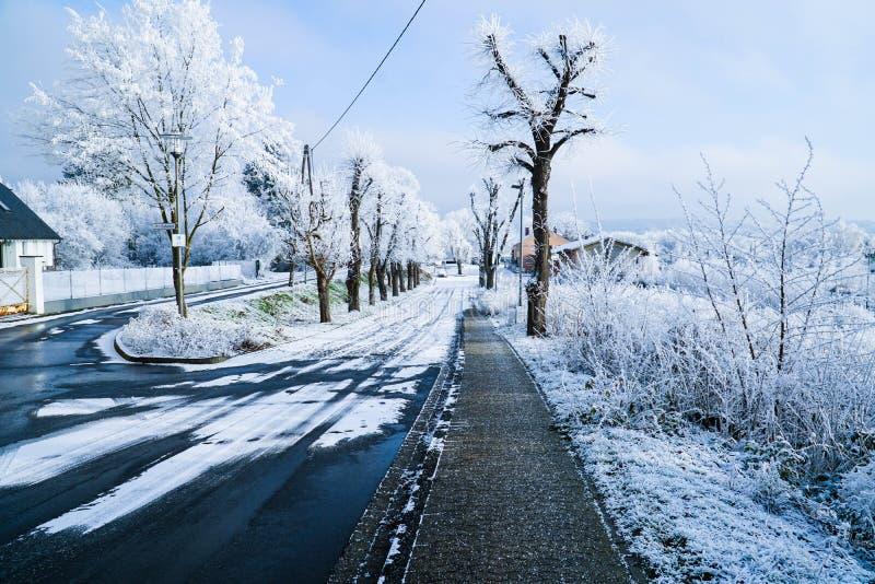 Road in snowy landscape stock image