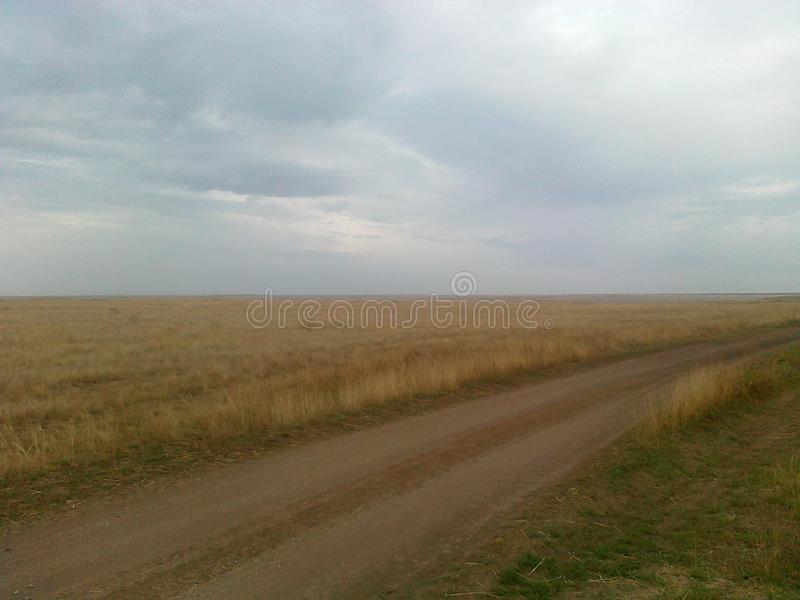 Road in the steppe stock image