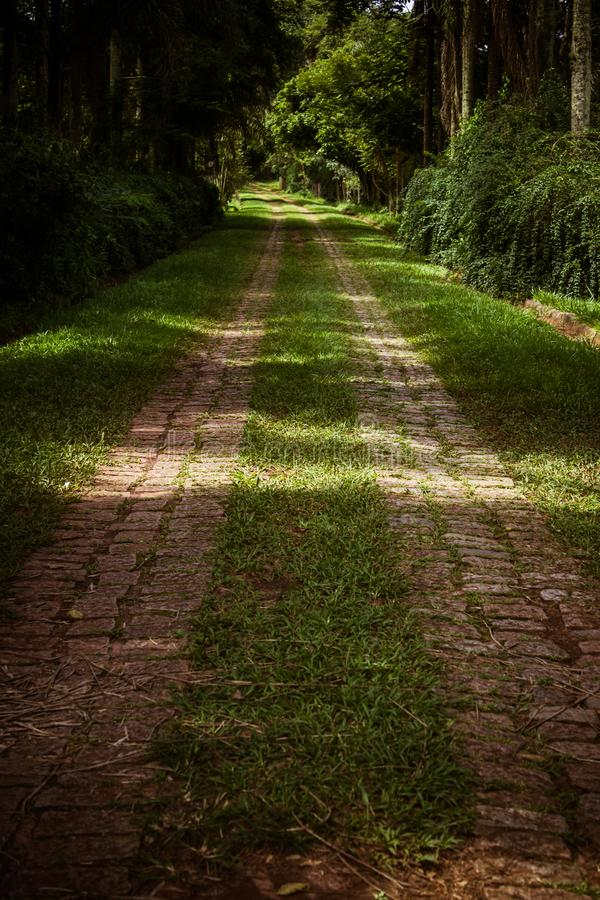 Road with stone pavement stock images