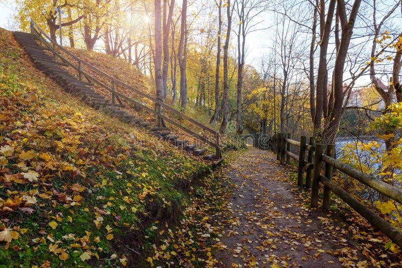 Road in sunny autumn park near Bauska town, Latvia.  stock photography