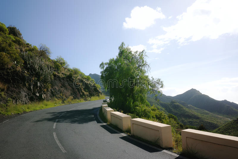 Road TF-12 in Anaga Rural Park - peaks with ancient forest on Te. Road TF-12 in Anaga Rural Park - evergreen peaks with ancient forest on Tenerife, Canary royalty free stock photos