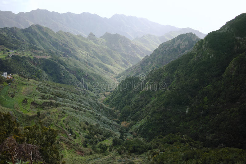 Road TF-12 in Anaga Rural Park - peaks with ancient forest on Te. Road TF-12 in Anaga Rural Park - evergreen peaks with ancient forest on Tenerife, Canary royalty free stock images
