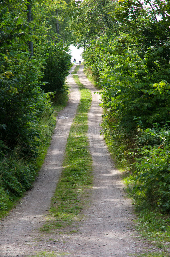 Download Road to the beach stock image. Image of road, footpath - 26552367