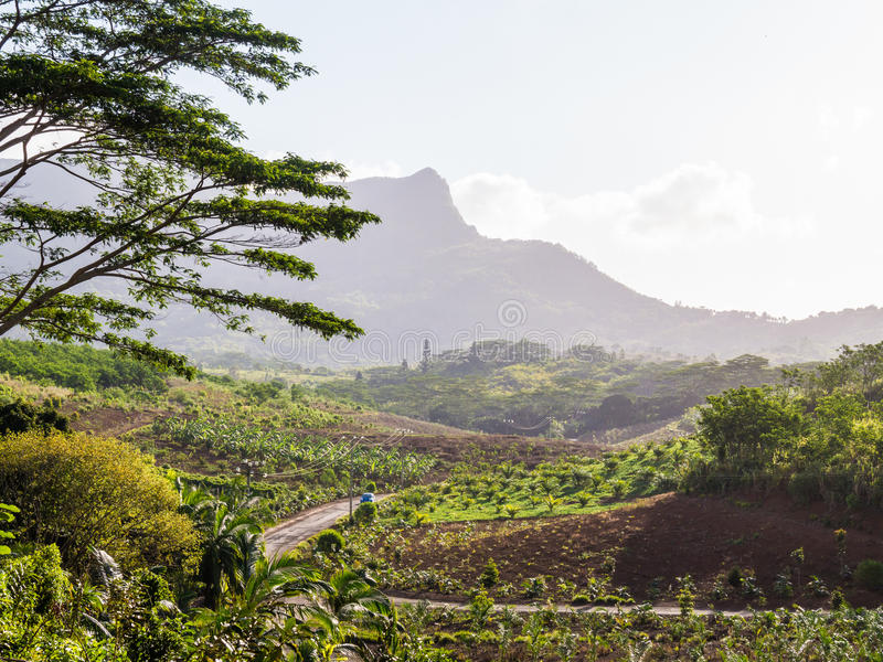 Road to Charmarel Waterfall Mauritius royalty free stock photos