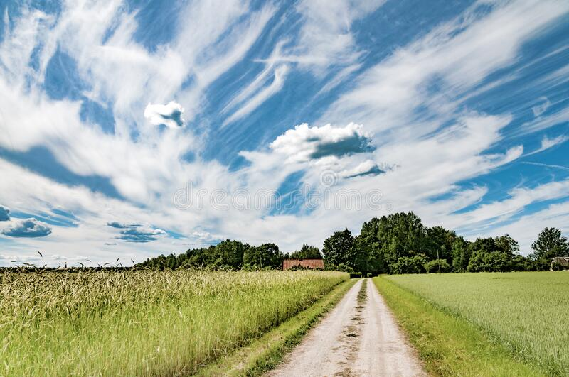 Road to a farm. Beautiful summer village landscape. Of middle Estonia stock photography