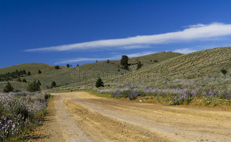 Download Road To The Flinders Ranges Royalty Free Stock Photos - Image: 23790378
