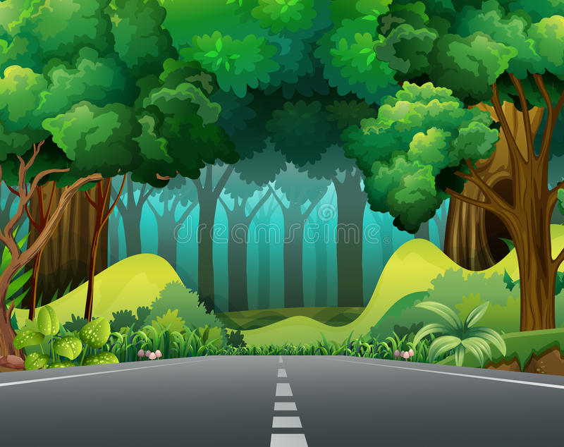 Road to the forest vector illustration