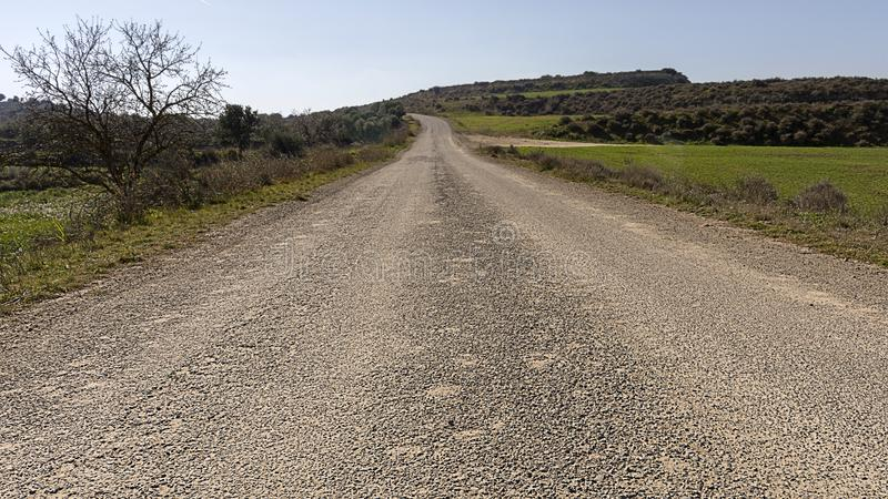 Road to the future concept. Old paved road leading to the horizon. Way throw landscape royalty free stock photography