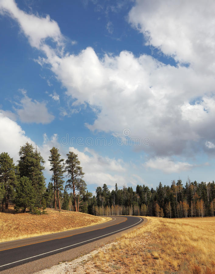 Download Road to the Grand Canyon stock photo. Image of grand - 22956124