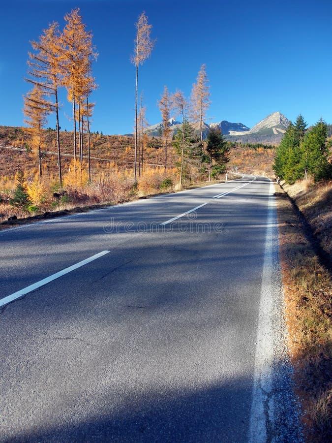 Road to High Tatras from Strba in autumn royalty free stock image