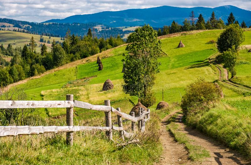Road to rural fields on hills in mountainous area royalty free stock photography