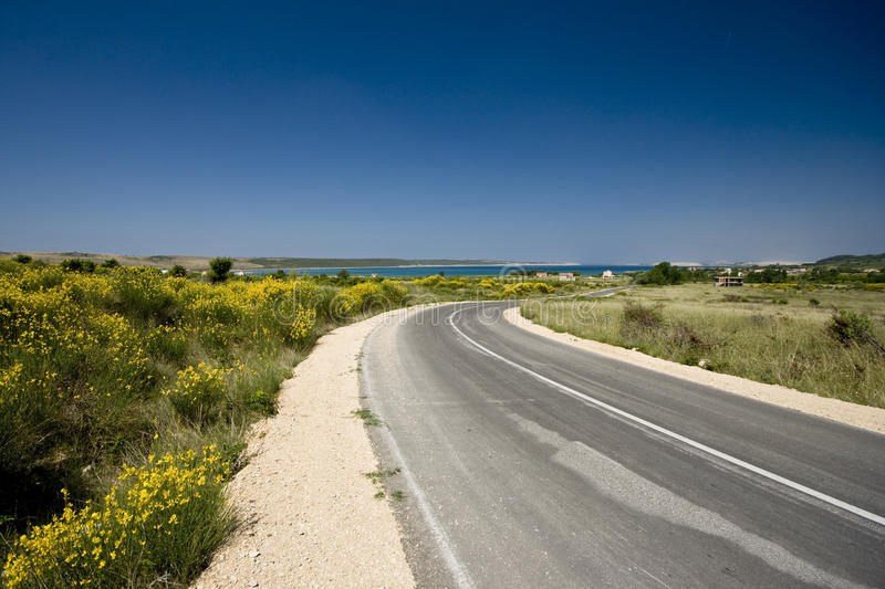 Road to the sea with brooms stock photo