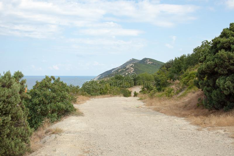 The road to the sea in a mountainous area with trees in the afternoon. Travel to natural places. Outdoor recreation. Landscapes on the road. Background image royalty free stock photos