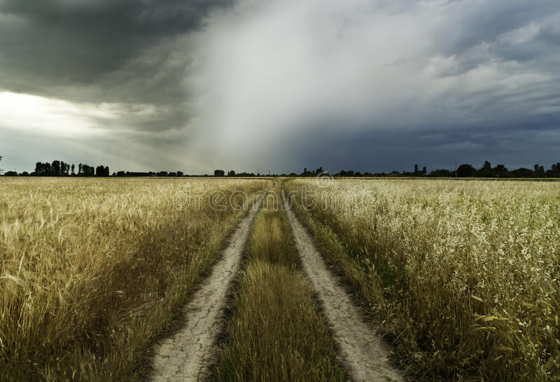 Road to a storm. Country road with a storm aproaching stock images