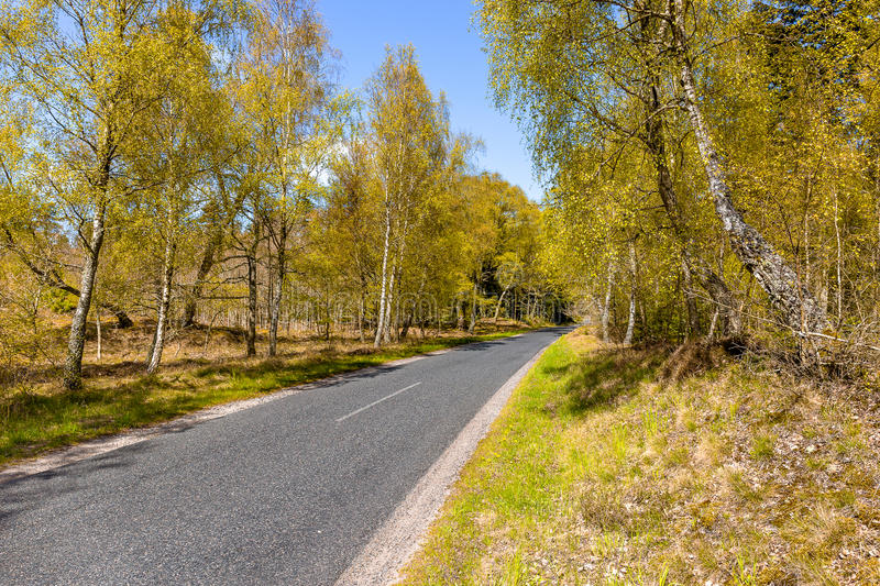Road to Tversted Stock mill stock photography