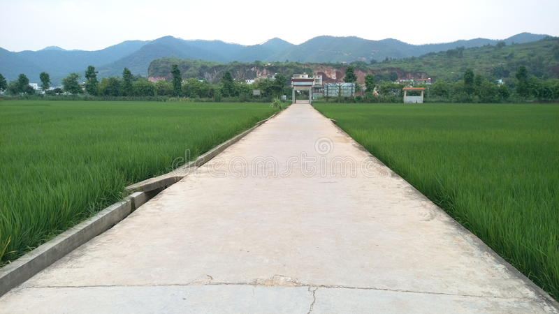 Road To The Village stock photo