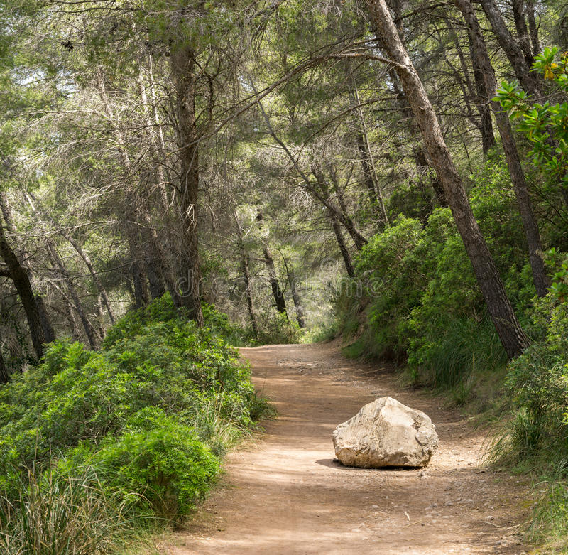 Road or trail blocked by big rock. Overcome an obstacle. Removing obstacles business concept. Clearing a path to success by overcoming large rock on a road stock image