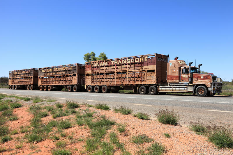 Road train parked on side of highway. 10 October 2010, Urldunda, Northern Territory, Australia. A road train transporting beef cattle parked on the side of the stock images