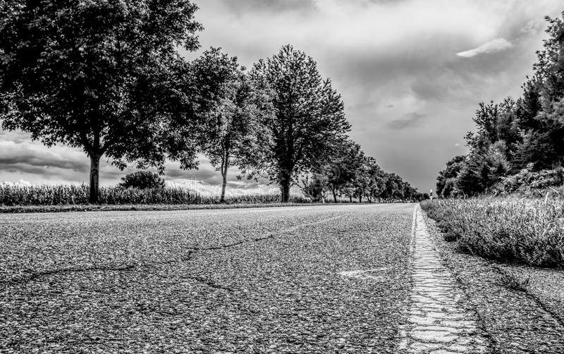 Road, Tree, Sky, Black And White stock photos