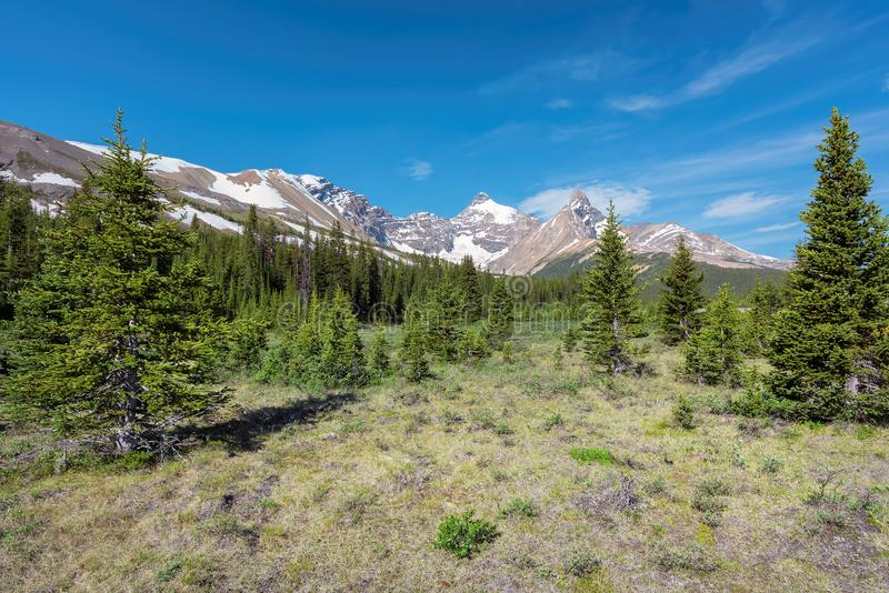 Scenic view from Icefield parkway on Rocky mountains in Banff National Park, Alberta Canada. Road Trip on Mountain highway in Rocky Mountains, Banff, Alberta royalty free stock image