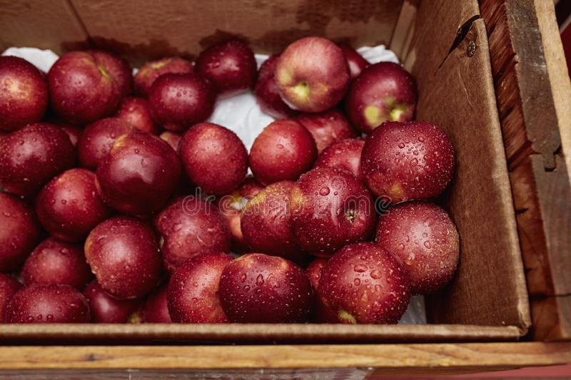 Road trip through New England in the Fall, USA. Wooden crate filled with red apples at a market in the New England town of Bennington, Vermont royalty free stock images
