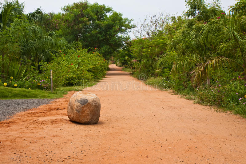Download Road in a Tropical Resort stock photo. Image of resort - 11006958