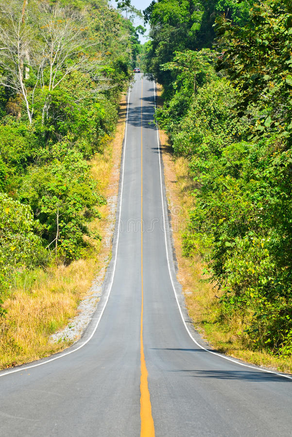 Road into the valley. Of Khao Yai, a Thai forest, a World Heritage Site stock photography
