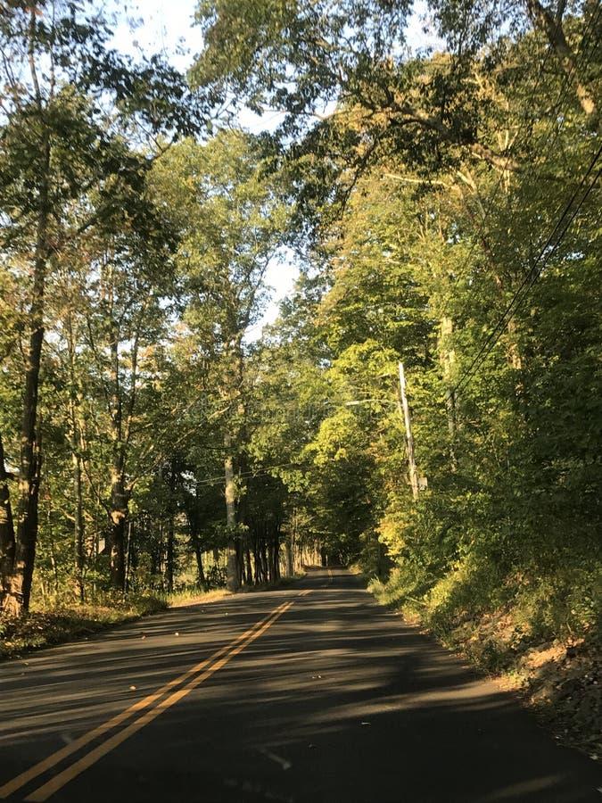 Road van Connecticut in de Lente stock foto