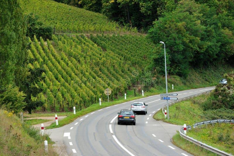 Road and vineyards at Kaysersberg, France stock photo