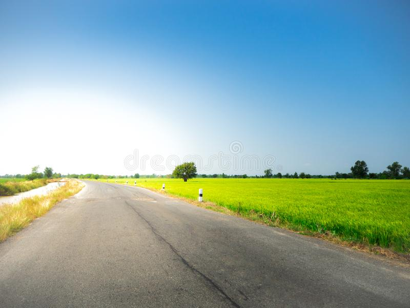 Road way on green meadow In the blue sky stock photos